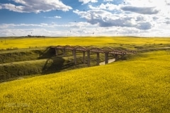 Scotsguard Bridge